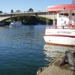 Pescado frito y la ciudad de Valdivia