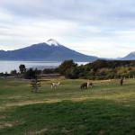Chile 2015 (part 1)