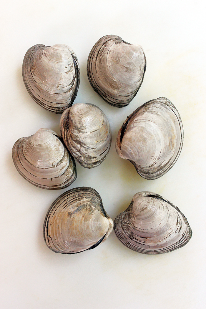 Parmesan clams with El Yucateco sauce - Clams