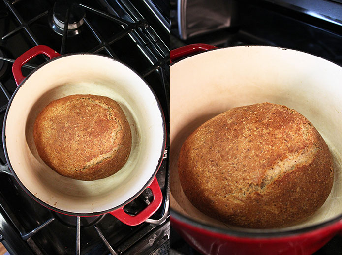 Whole wheat bread - In pan