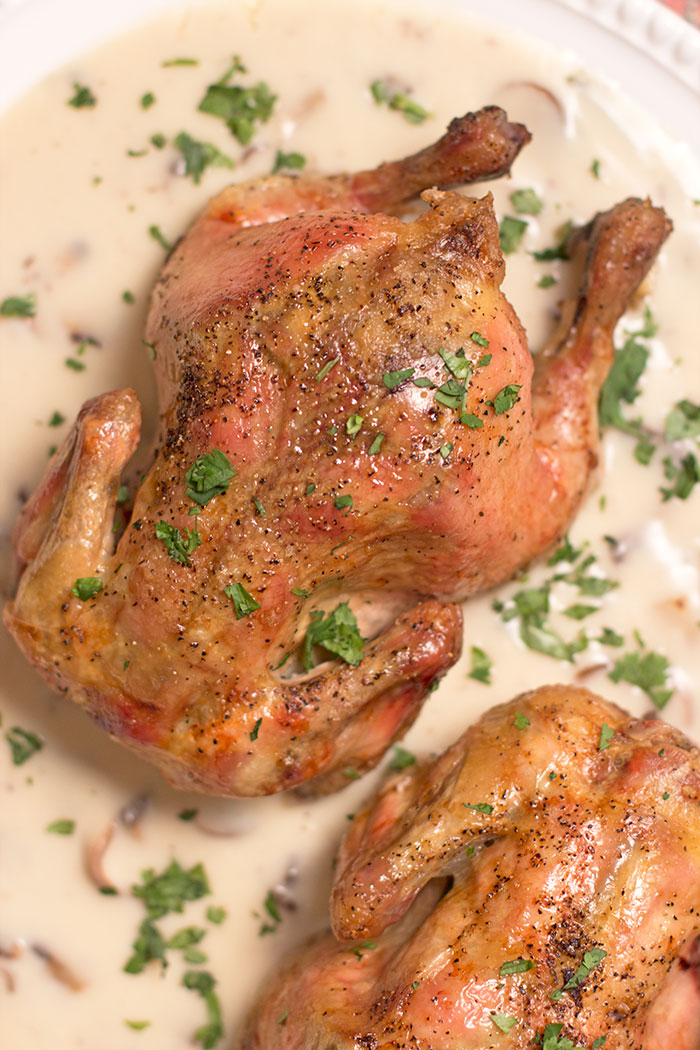 cornish-hens-with-mushrooms-and-wine-sauce04